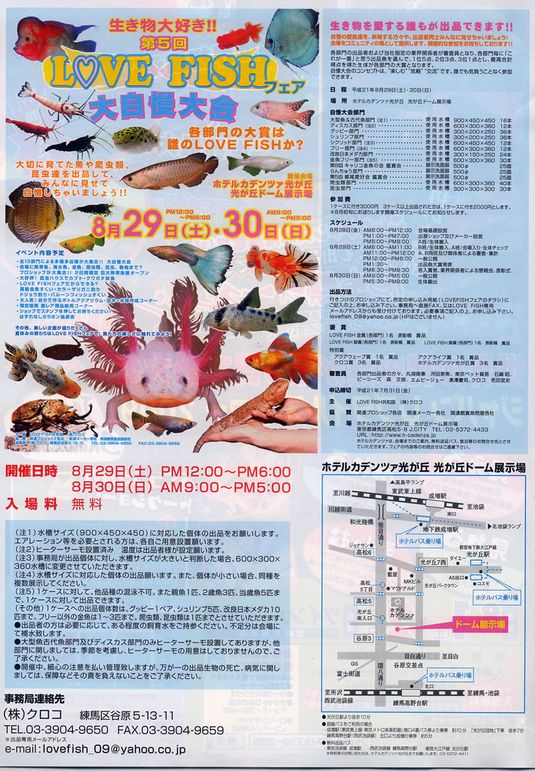 2009lovefish_org@.jpg